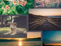 giveaway-aperturevintage-set-of-400-photos-for-free