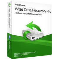 Wise Data Recovery Pro (1 Year / 1 PC)