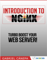 eBook: Introduction to Nginx for Free   NET-LOAD